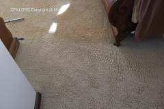 Carpet discoloration and lines
