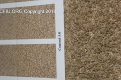 Carpet inspection with CRI Scales