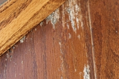 Engineered wood moisture damage